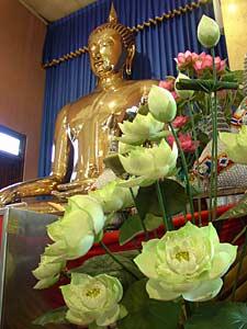 buddha_lotus