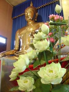 Buddha_st