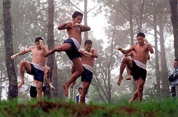 boxer_training