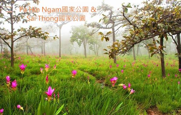 rain2_Pa Hin Ngam國家公園