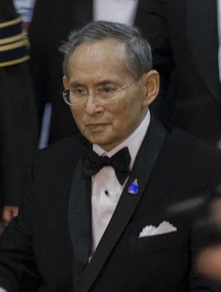 普美蓬國王-8