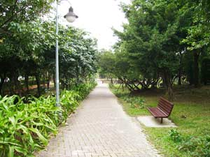 foot_path